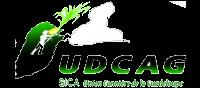 UDCAG